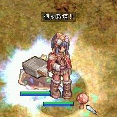 b0032787_1352388.jpg