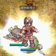 b0032787_136555.jpg