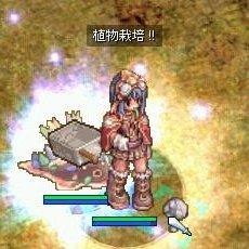 b0032787_1372951.jpg