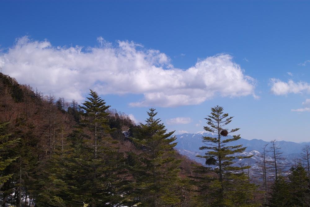 2/12 晴れ 八ヶ岳スノーシュー_a0060230_20153422.jpg