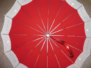 開いた傘を内側から撮った写真。16本の骨が綺麗な傘です。