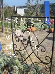 f0071732_23514475.jpg