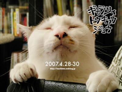 4/28~4/30 うちの猫らと「ち」の変な作品展_a0028451_1385273.jpg