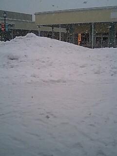 雪国です*_f0126121_2328938.jpg