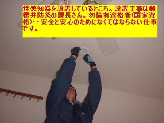 f0031037_1752121.jpg