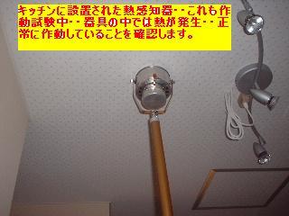 f0031037_1752443.jpg