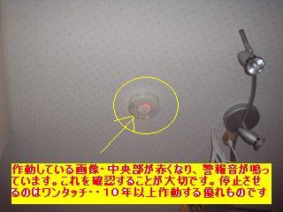 f0031037_17525243.jpg