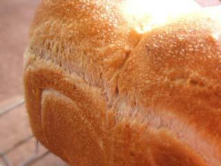 山食(バター4%)_c0110869_14194151.jpg