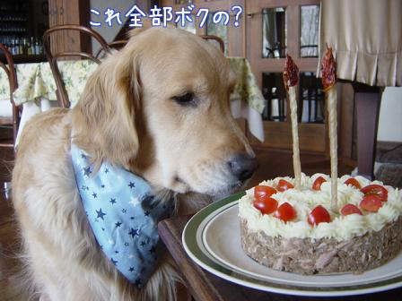 五郎の誕生日_f0064906_17151953.jpg
