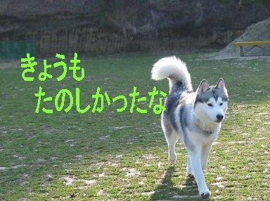 f0112407_15101494.jpg