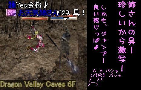 f0072010_3464267.jpg
