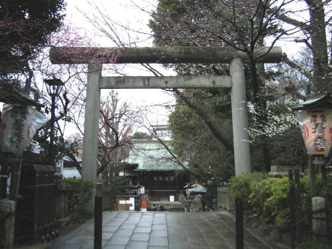 梅は咲いたか 桜は・・・_d0091021_232224.jpg