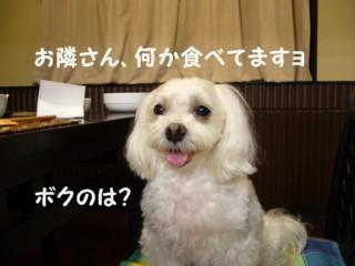 f0005727_20312881.jpg