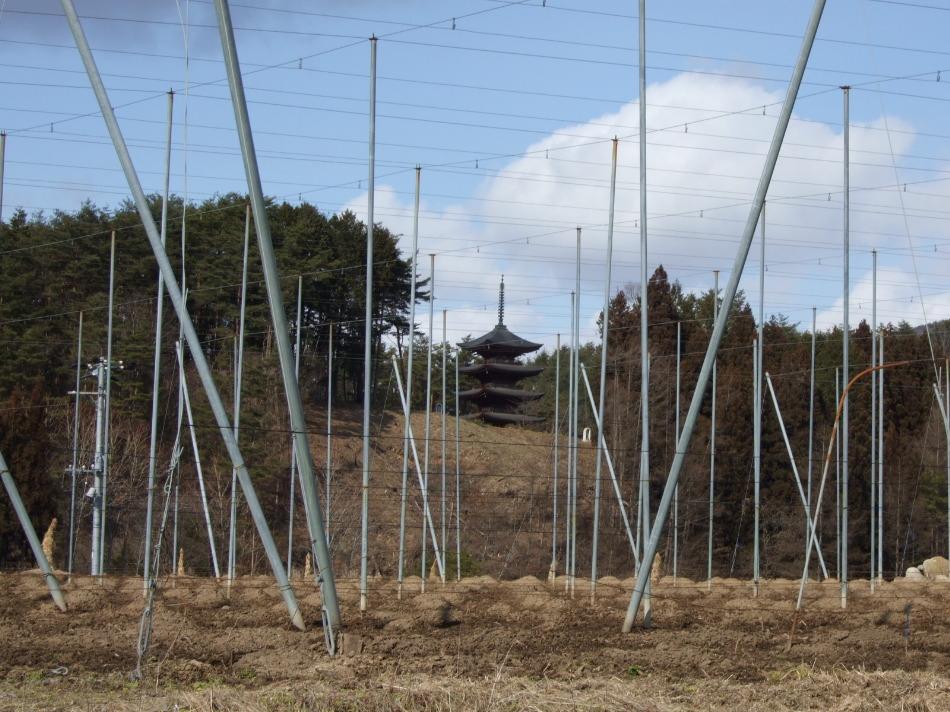 五重塔、支柱越し_d0001843_10144492.jpg