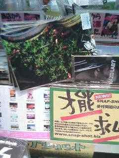 Snap-Shot発売!!_f0025948_0411226.jpg
