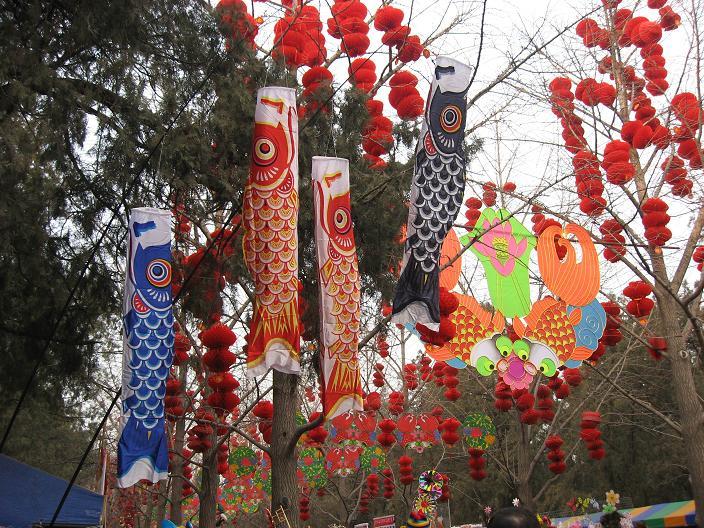 お正月祭り(春节庙会)地壇公園_f0056261_0374362.jpg