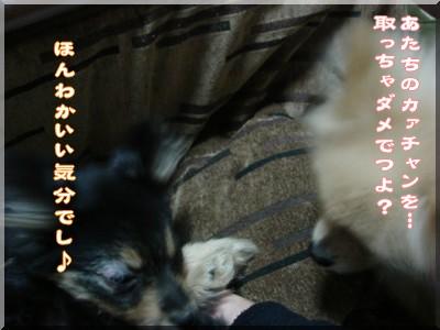 b0078073_22514427.jpg