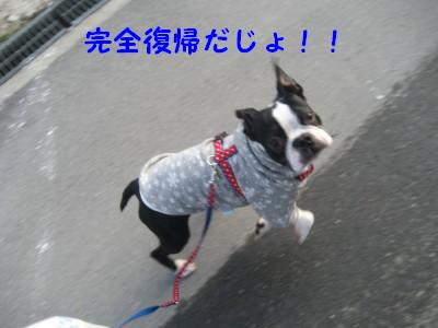 c0092787_1034612.jpg