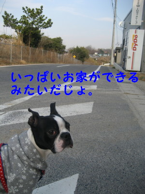 c0092787_1075117.jpg