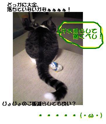 b0022595_1053255.jpg