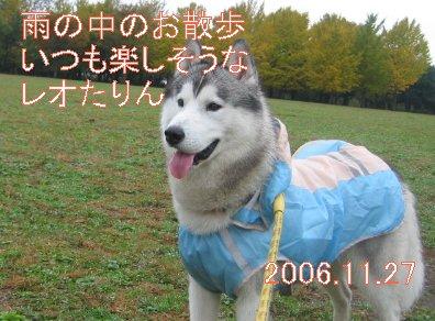 f0112407_2152074.jpg