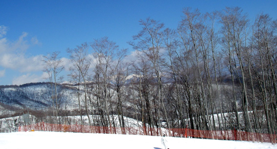 2/20 岐阜に雪遊び_a0062810_10355517.jpg