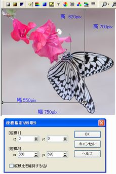 c0106443_11412746.jpg