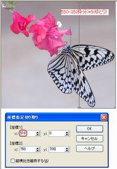 c0106443_11414922.jpg