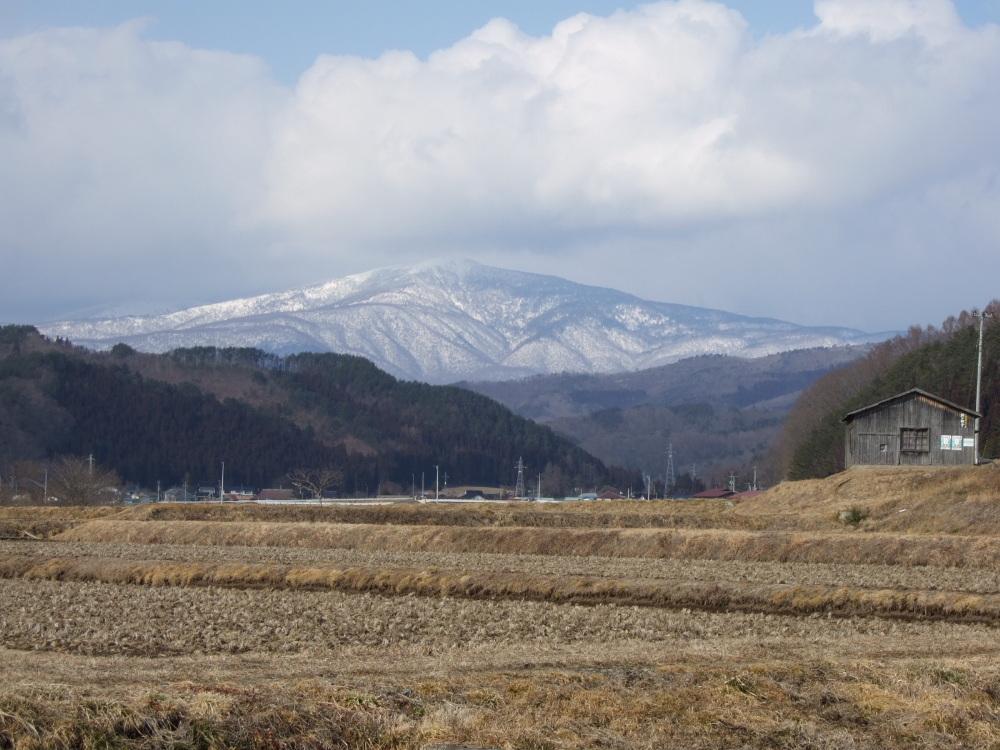 にっぽんの春的風景_d0001843_23145564.jpg