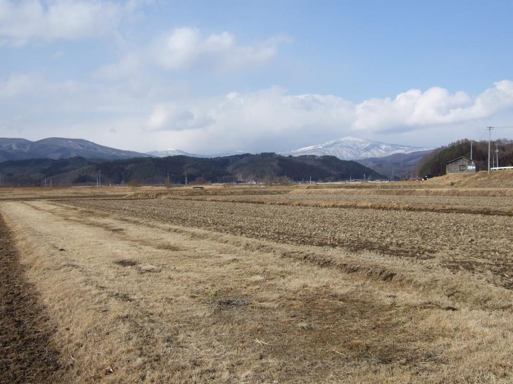 にっぽんの春的風景_d0001843_23152374.jpg