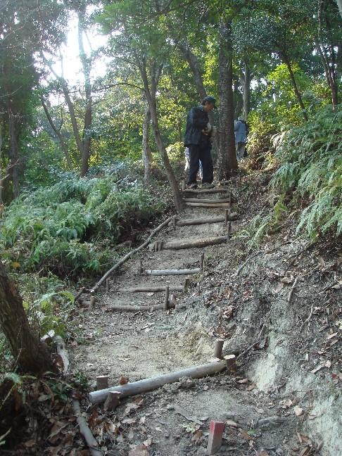 新山の通路整備・・・定例活動日_c0108460_17351196.jpg