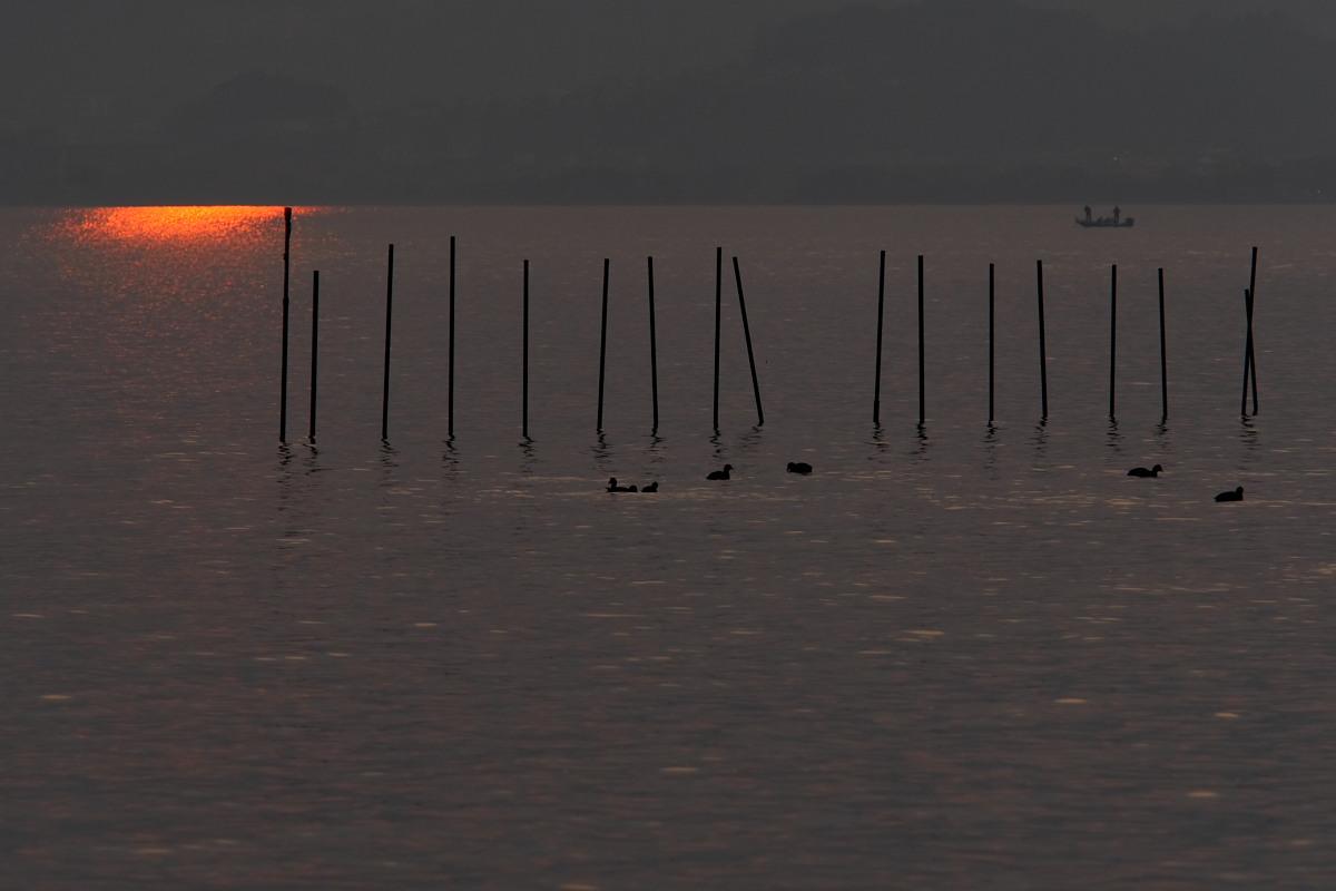 滋賀 琵琶湖 1_f0021869_1847985.jpg