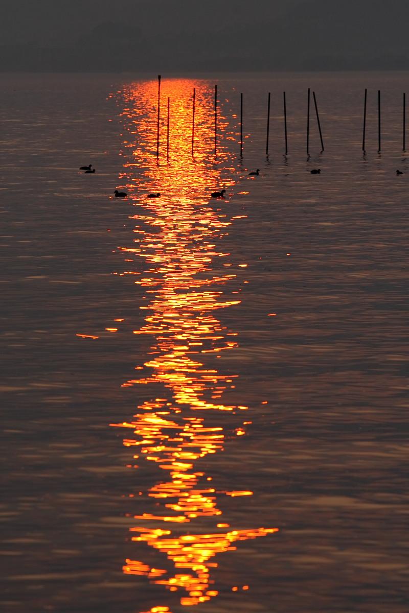 滋賀 琵琶湖 1_f0021869_18501937.jpg