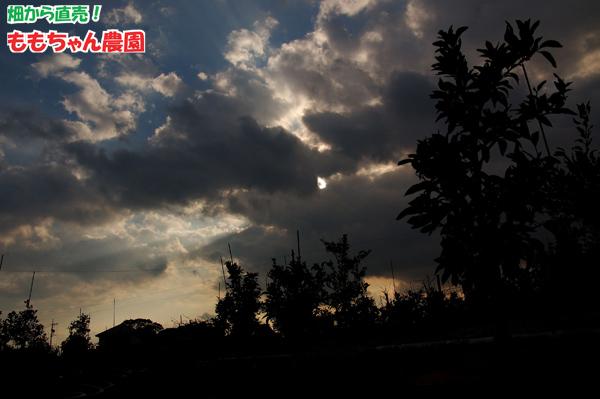 f0110680_1393430.jpg