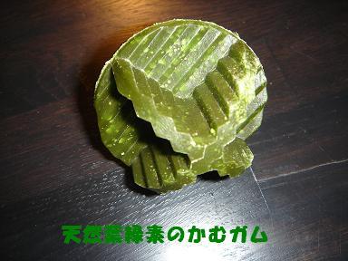 f0110199_0101283.jpg