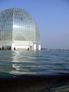 葛西臨海水族館へ行ってきた_c0053520_104455.jpg
