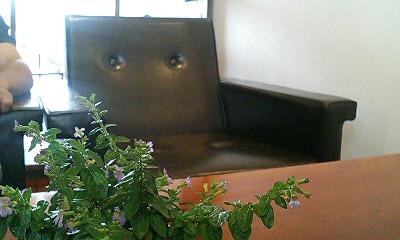 青山 円 個展 『線と趣景』 @ gecko cafe_b0097729_1720254.jpg