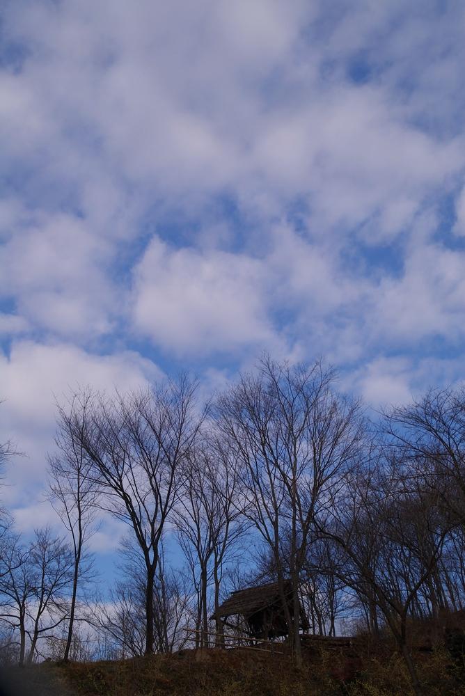 2/18 雨のち晴れ 空3題_a0060230_22535836.jpg