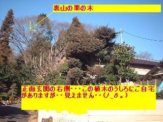 f0031037_1830578.jpg