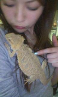 蜥蜴と私_c0038086_0514021.jpg