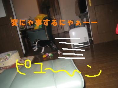 c0092787_10473898.jpg