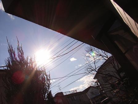 b0072404_137477.jpg