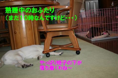 f0121712_11415578.jpg