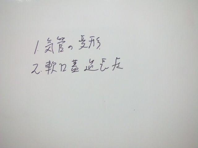 f0059334_914184.jpg