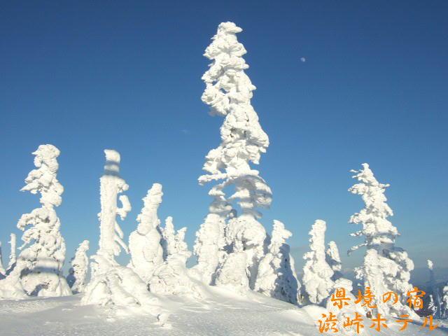渋峠の樹氷_f0076939_136914.jpg