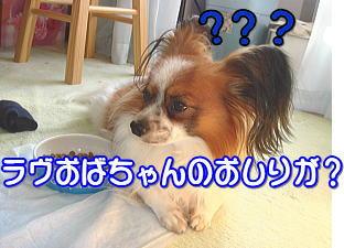 f0011845_043661.jpg
