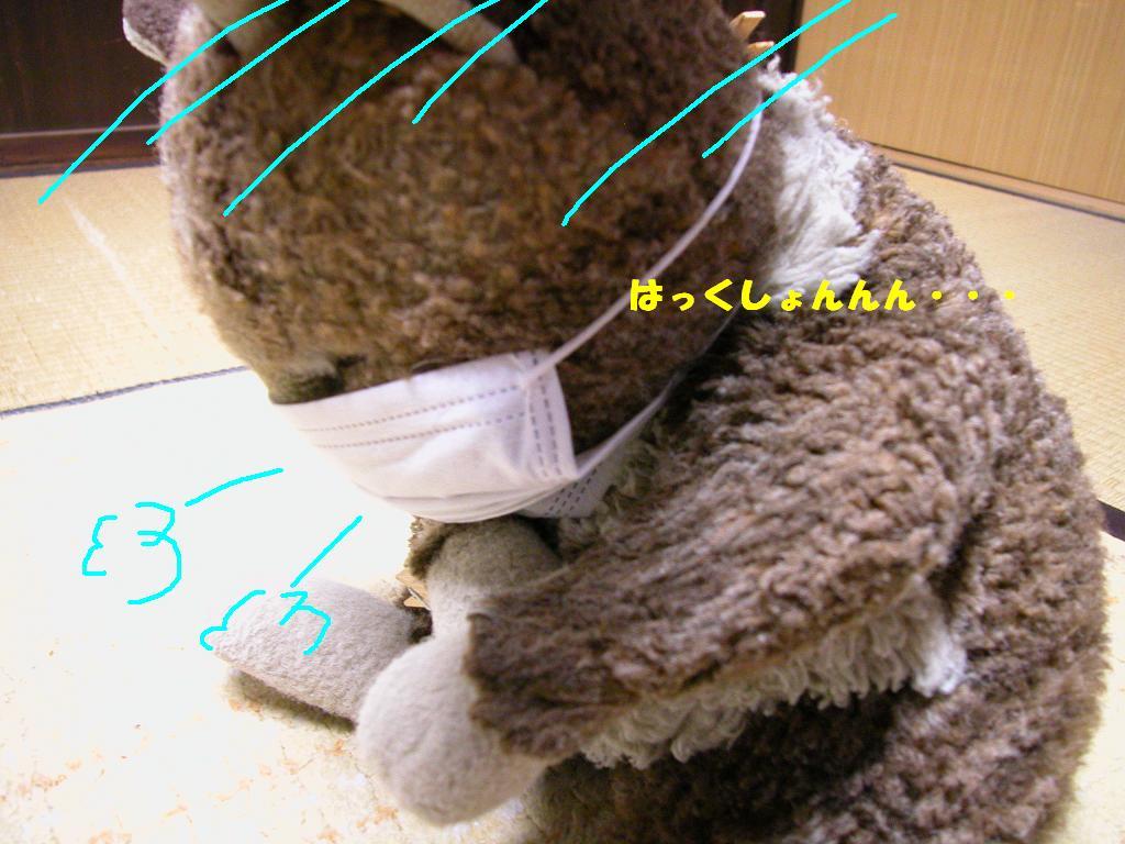 b0059978_22584532.jpg