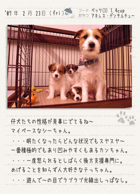 b0040323_022329.jpg