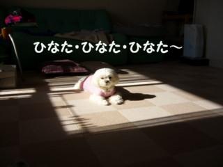 f0005727_16431876.jpg