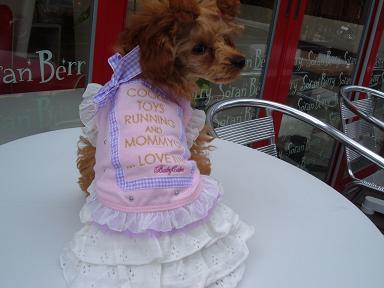 BABY CAKE新作入荷しました!!!!!_b0084929_104341100.jpg